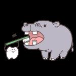 zoo_kaba